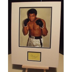 ALI MUHAMMAD RIP Genuine Signed Display UACC DEALER RD#285 COA